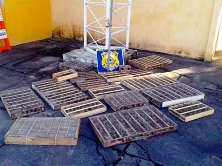 Itamaraju: PRF apreende mil pássaros durante fiscalização na BR-101
