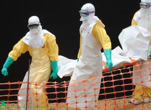 Guiné, Serra Leoa e Libéria fecham fronteira comum onde Ebola surgiu