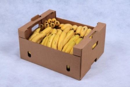 Bandidos disfarçados de carteiros assaltam posto de combustíveis e ao fugiram deixam uma caixa com bananas