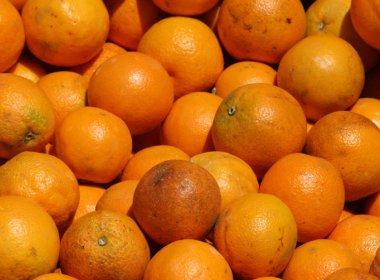 O Tribunal de Justiça da Bahia (TJ-BA), gasta quase R$ 54 mil em frutas; lista inclui 1,5 mil abacaxis e 57,6 mil laranjas