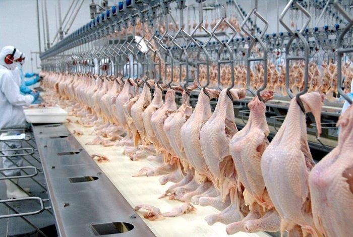 ADAB abre consulta pública para agroindústria de pequeno porte para abate de aves