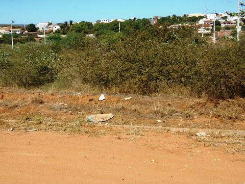 Moradores reclamam de matagal em terrenos baldios no centro da cidade