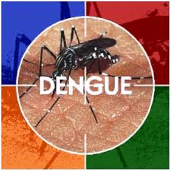 19ª DIRES realizará audiência pública sobre dengue