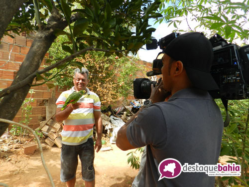Maetinguense 'amigo de jacaré' é tema de reportagem da Rede Record