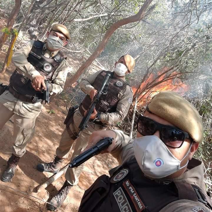 Polícia Militar incinerou plantação de maconha em Presidente Jânio Quadros