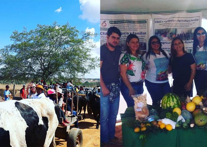 Feira de Animais e grandes shows marcam o aniversário de Malhada de Pedras