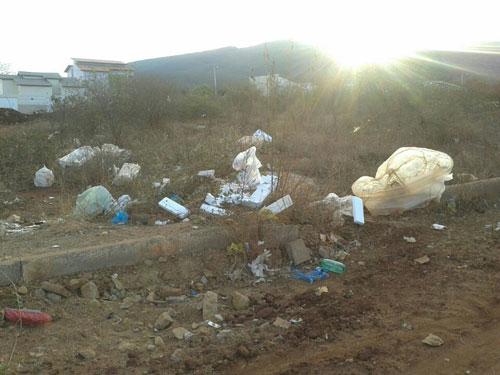 Animais mortos, lixo e falta de infraestrutura deixam indignados moradores do Santa Tereza