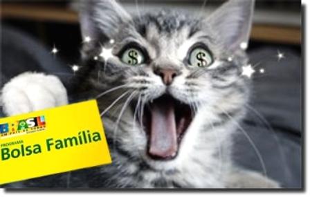 Gato recebe por sete meses benefício do Bolsa Família