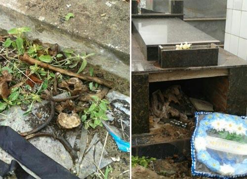 Jovens ateus que violavam sepulturas e espalhavam restos mortais são detidos pela polícia