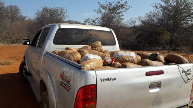 Livramento de Nossa Senhora: Justiça determina prisão de donos de fazenda onde droga foi encontrada
