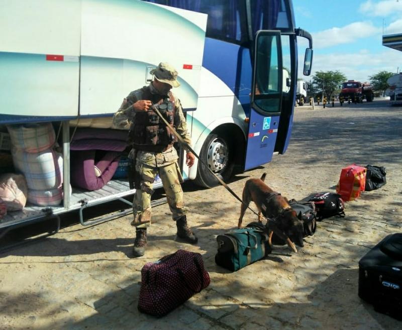 Operação Faro Fino é realizada pela CAESG na BA-262, entre Aracatu e Caraíbas