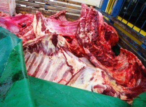 Adab apreende 900 kg de carne clandestina em Firmino Alves