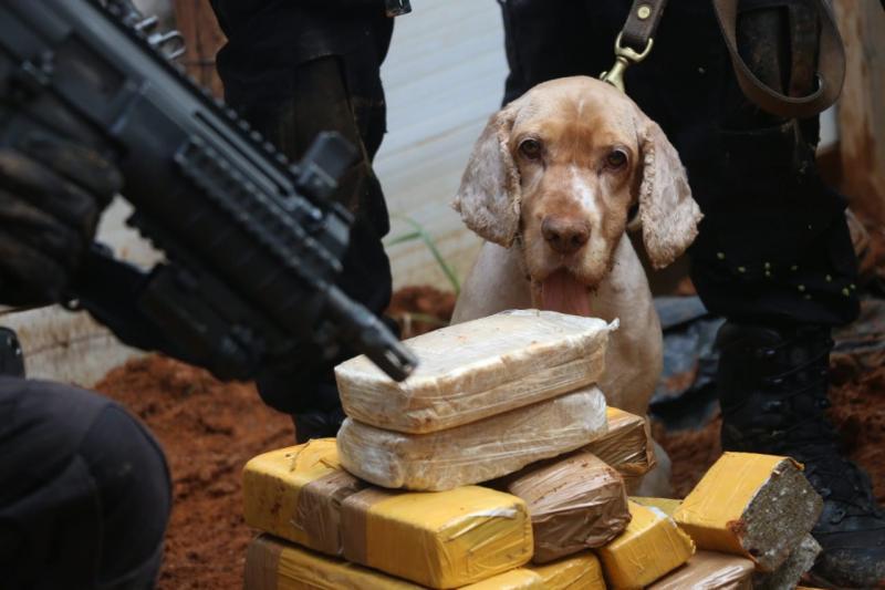Polícia baiana desmonta esquema que movimentava R$ 2 milhões por mês