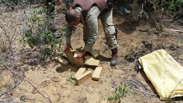 Operação policial conjunta apreende quase 50 kg de maconha