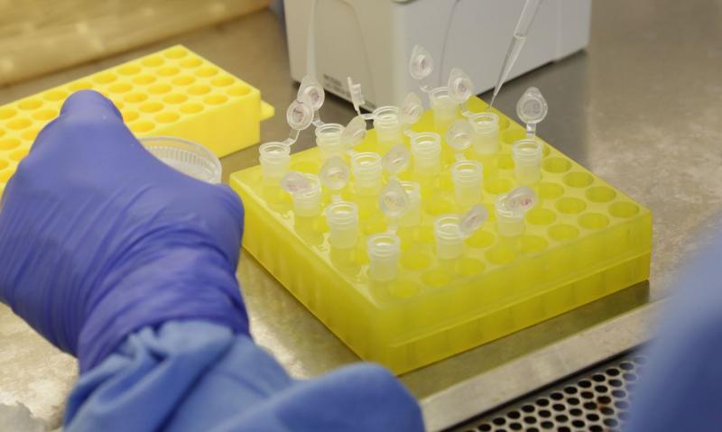 Covid-19: Fiocruz quer contribuir com início da vacinação ainda em janeiro