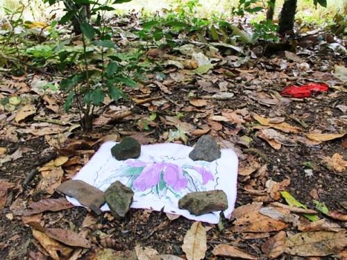 Bebê recém-nascido é achado morto em plantação de cacau