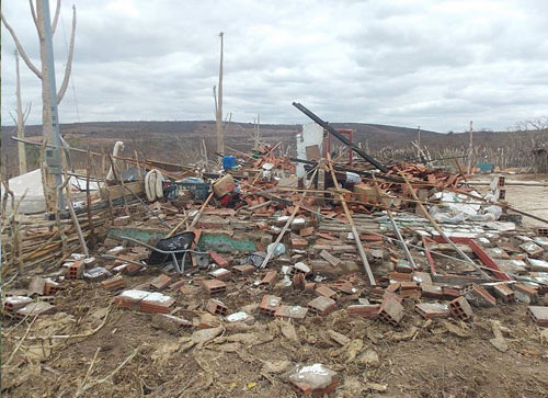 Chuva de granizo e vento forte mata animais, desabriga pessoas e destrói plantações