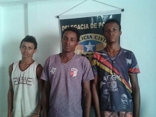 Policia descobre plantação de maconha na zona rural de Ibicoara e três elementos são detidos