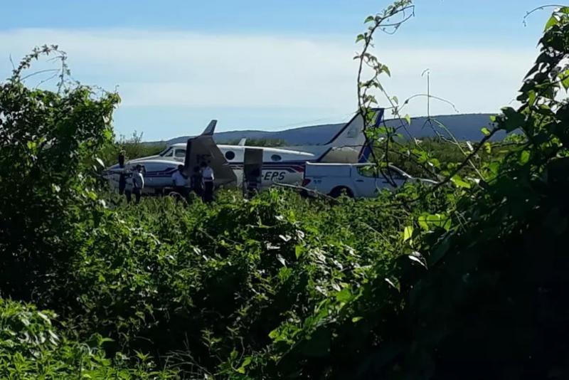 Ibotirama: Avião que transportava vacinas contra a Covid-19 bate em jumento