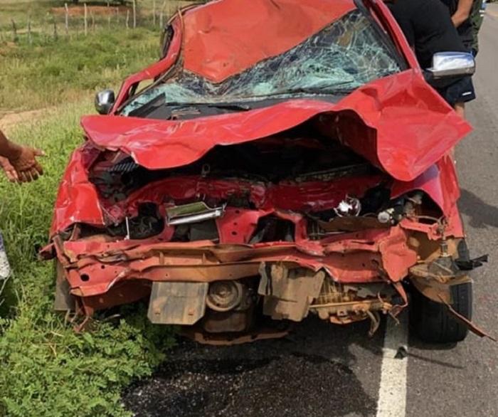 Dom Basílio: Veículo colide contra animal solto na pista na comunidade de Fazendinha