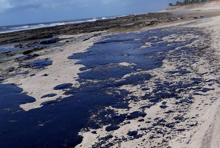 Exército vai reforçar ações em praias atingidas por óleo
