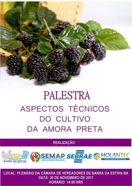 Palestra sobre o cultivo da amora-preta será realizada em Barra da Estiva; saiba mais