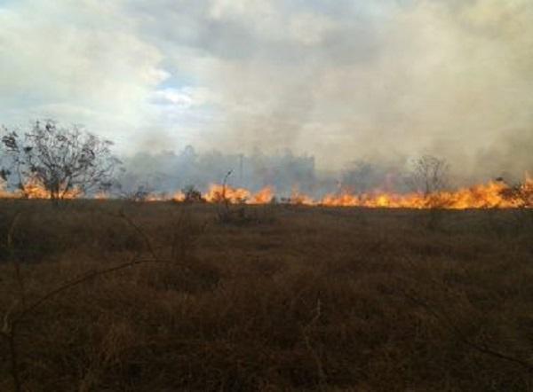 Conquista: Incêndio de grande proporção atinge área próxima da Uesb