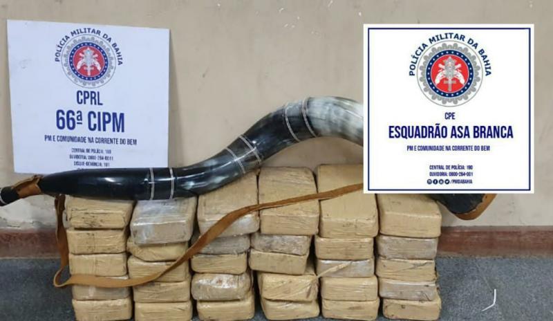 Polícia Miliar apreende R$ 750 mil em pasta base de cocaína na BR-116