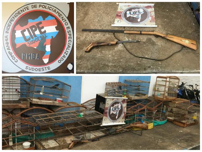Licínio de Almeida: Cipe Sudoeste apreende armas e animais silvestres em cativeiro
