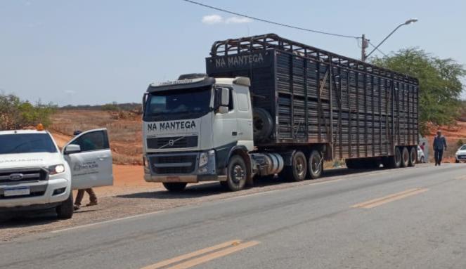 Tanhaçu: Ações de inteligência da ADAB detectam quadrilha especializada em esquentar guias clandestinas de animais