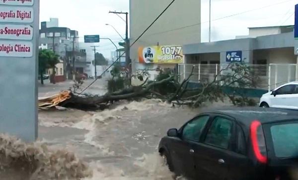 Temporal alaga ruas e derruba árvores em Vitória da Conquista
