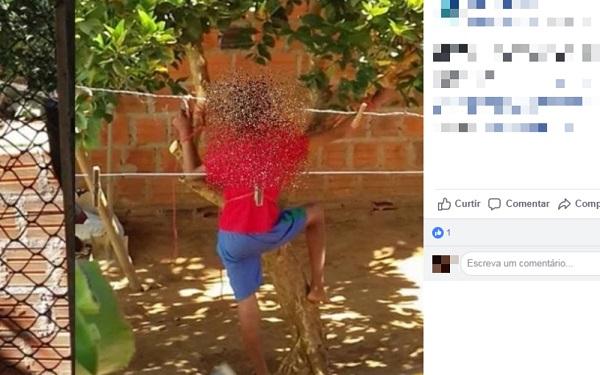 Palmas e Monte Alto: Mulher é presa após amarrar filho de 12 anos em árvore