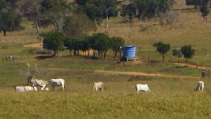 Denúncia de roubo de gado é feita por moradores da zona rural de Vitória da Conquista