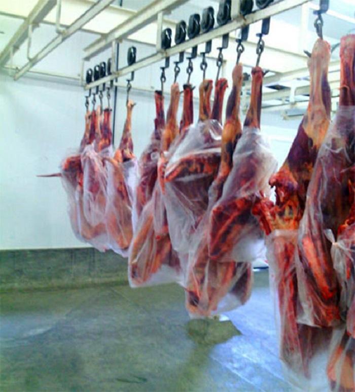 Bahia: Adab regulamenta procedimentos para abate de jumentos