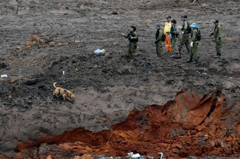 No 7° dia após o desastre são contabilizados 99 mortos e 259 desaparecidos