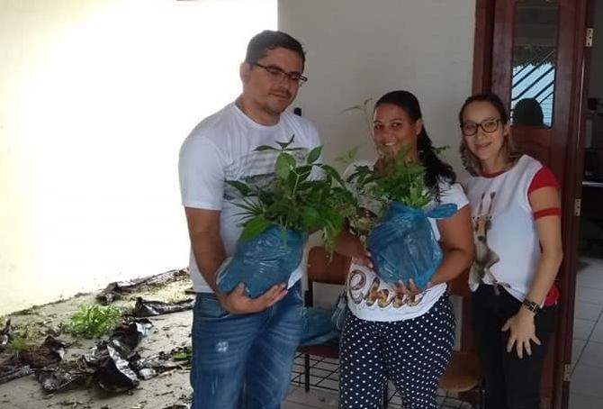 Prefeitura de Malhada de Pedras entrega mudas de árvores frutíferas e essências florestais a agricultores