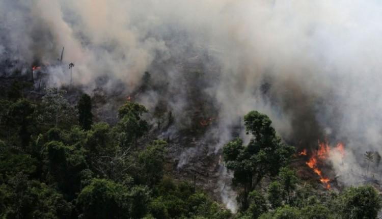 Ministro do Meio Ambiente diz que seca e calor ampliam queimadas