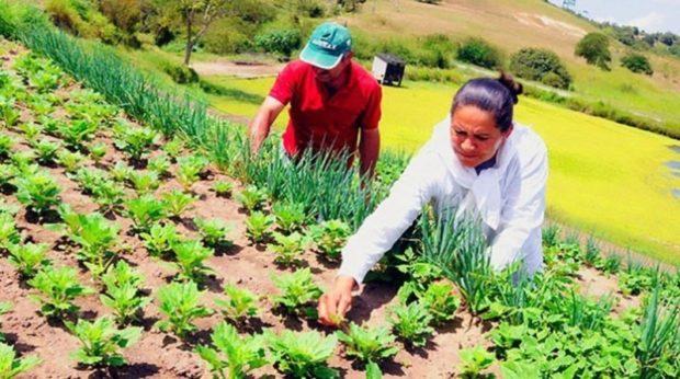 Bahia firma relação com Nações Unidas e vai investir mais R$ 1 bilhão no rural baiano