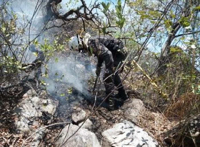 Rio de Contas: Fogo é controlado parcialmente na Serra das Almas