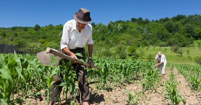Agricultores familiares de Aracatu, Livramento e mais 121 municípios receberão benefícios do Governo para cobrir perdas com a seca