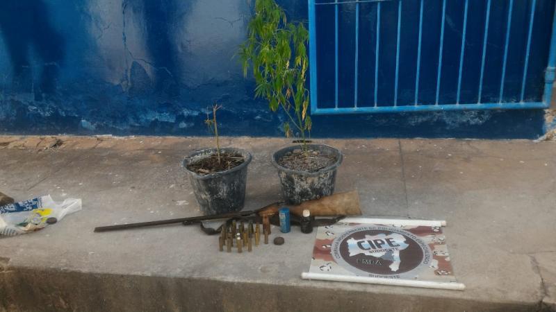 Cipe Sudoeste apreende pés de maconha e arma na zona rural de Barra da Estiva