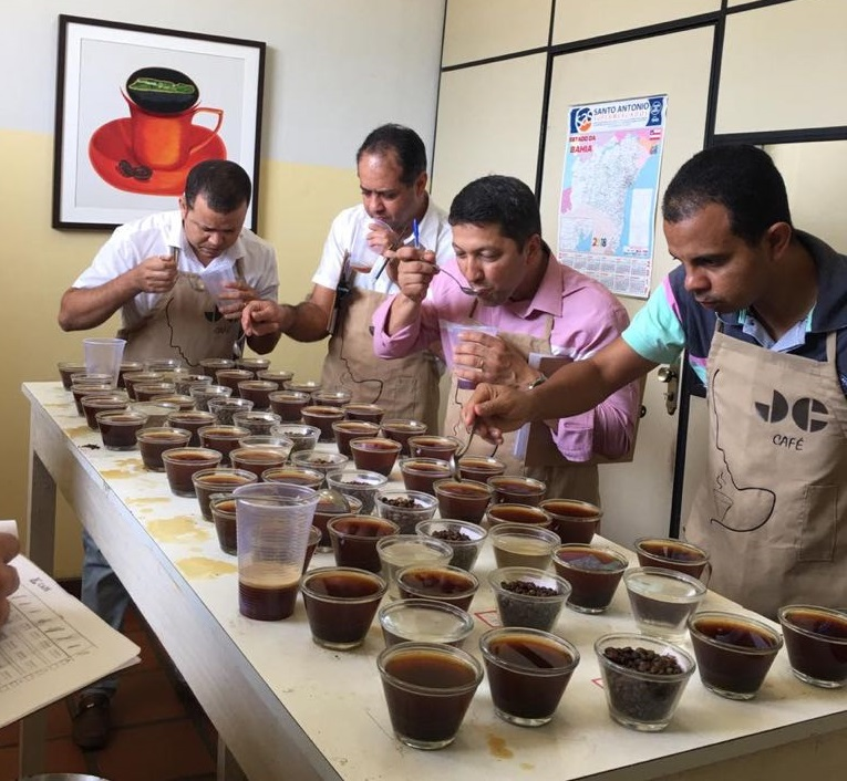 Agricultores da Chapada Diamantina se destacam em I fase do Concurso de Cafés Especiais