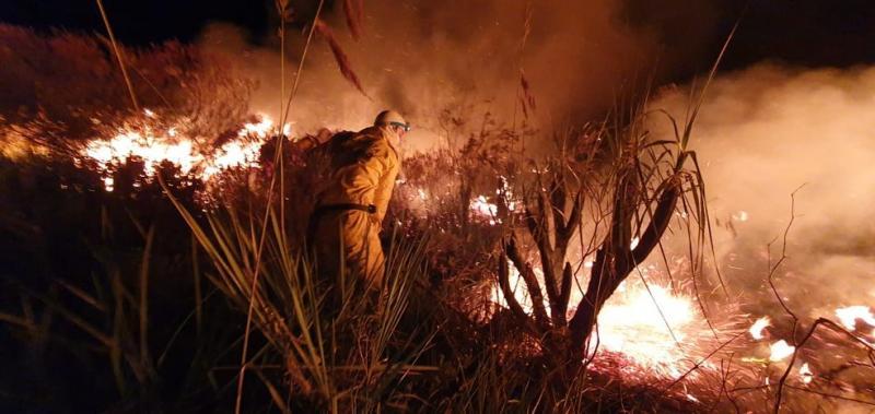 Chapada Diamantina: Incêndio atinge área florestal na cidade de Andaraí