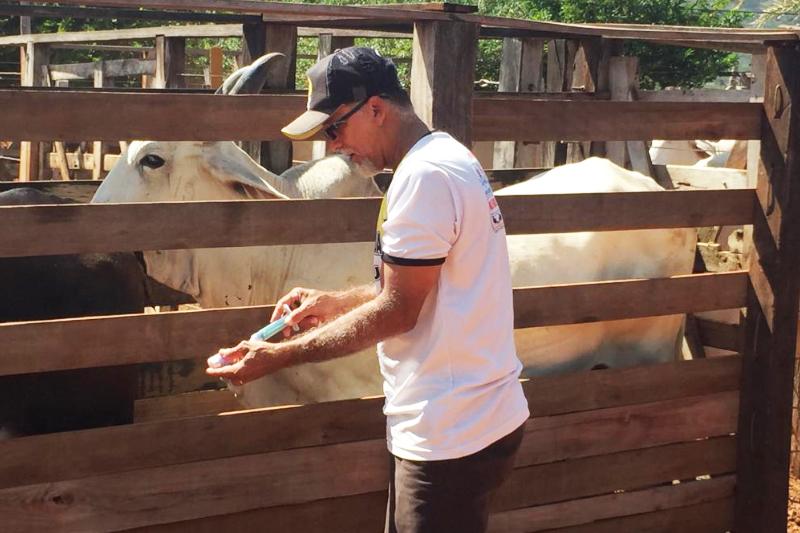 Guajeru: Equipe da Adab e agentes municipais executam a primeira etapa de vacinação contra a Febre Aftosa