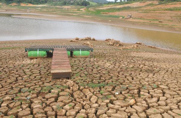 Nos últimos 4 anos, 88,5% das cidades baianas enfrentaram seca, aponta IBGE
