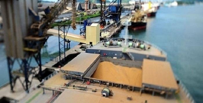 Associação eleva previsão de exportação de soja do Brasil em 2019 por disputa China-EUA