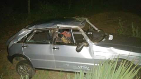Animal na pista provoca capotamento na BA - 148 no município de Livramento