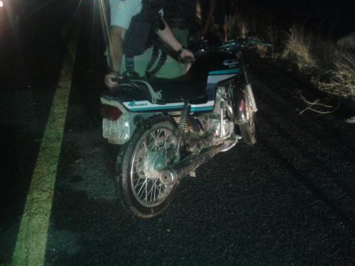 Animal na pista provoca acidente com vítima fatal na BA-573, trecho entre Guanambi e Matina