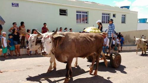População de Rio do Antônio prestigiou o 3º Encontro de Carro de Boi