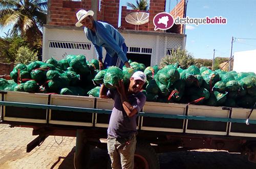 Malhada de Pedras: Agricultor se destaca no cultivo de abóbora e melancia